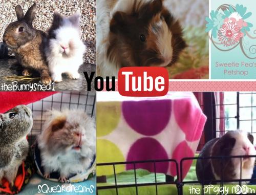 Youtube Channels We Heart